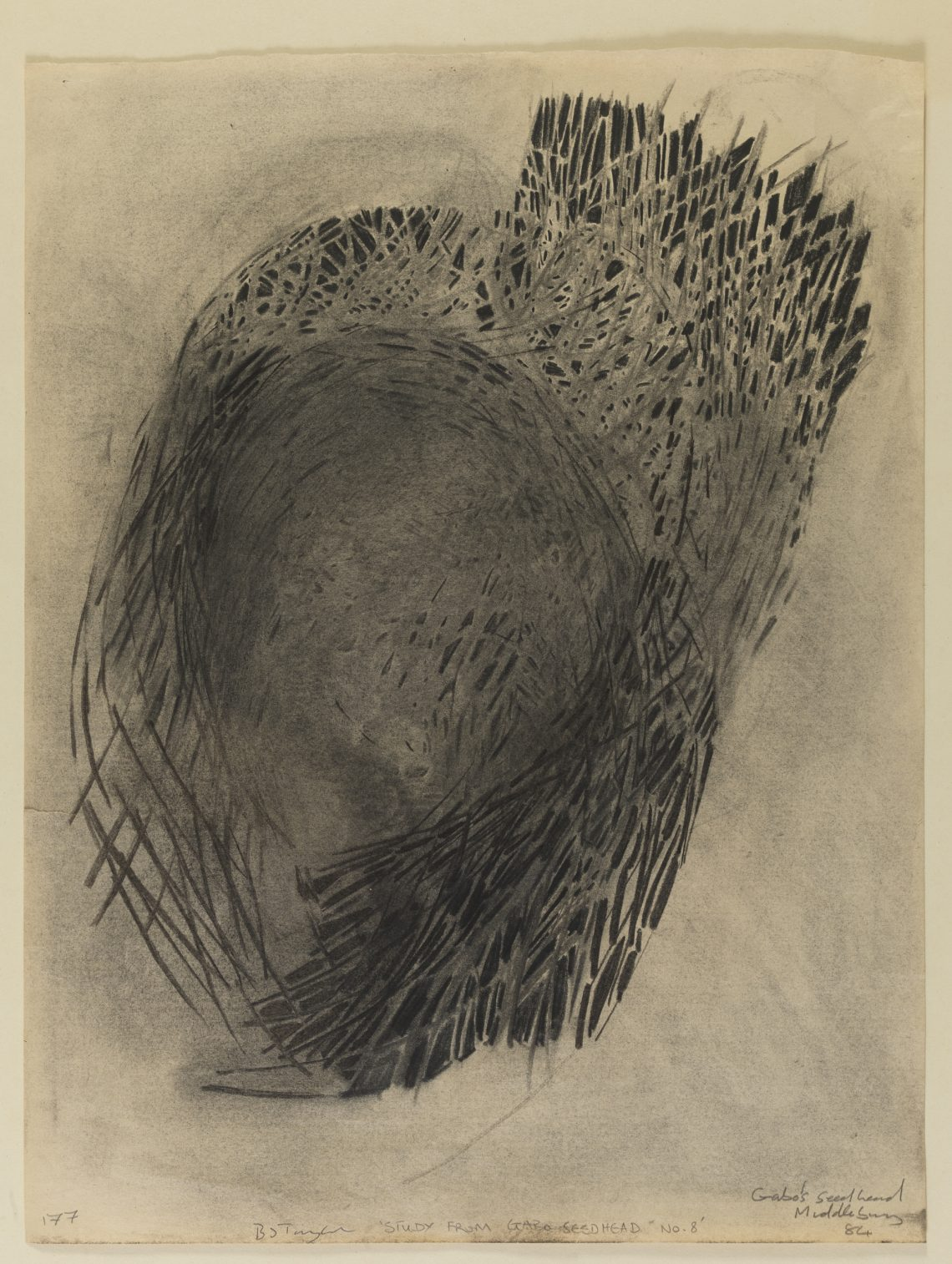 Brian_Taylor_Study_for_Naum_Gabo's_Seed_Head_8
